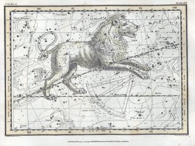 Leo Constellation, Zodiac, 1822 by Science Source