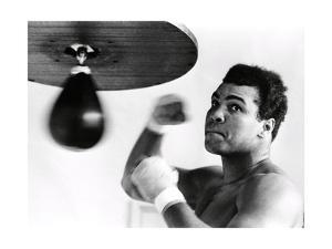 Muhammad Ali, The Greatest by Science Source