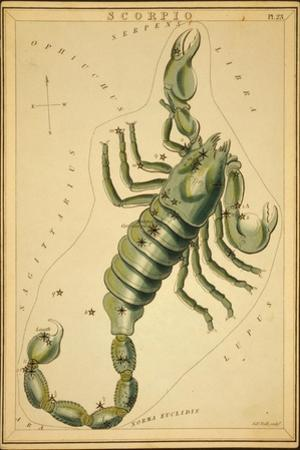 Scorpius Constellation, Zodiac Sign, 1825 by Science Source