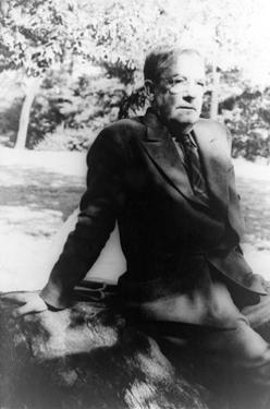 Sherwood Anderson, American Author by Science Source