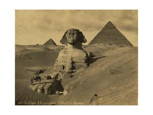 Sphinx and the Pyramids, 19th Century by Science Source