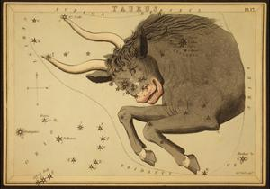 Taurus Constellation, Zodiac Sign, 1825 by Science Source