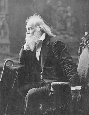 Walt Whitman, American Poet by Science Source
