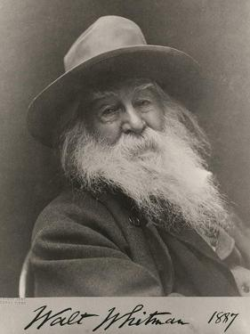 Walt Whitman, American Poet by Science Source