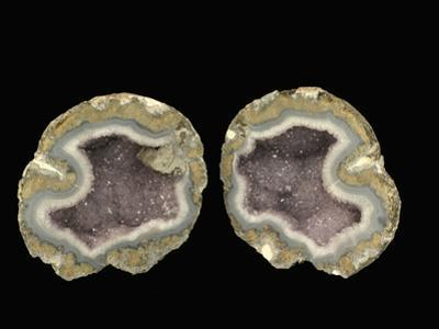 Amethyst Geode Opened, Mexico, Specimen Courtesy JMU Mineral Museum by Scientifica