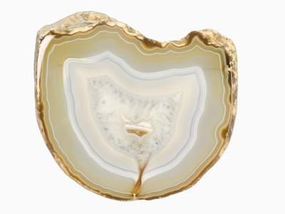 Sliced and Polished Agate Geode, Brazil by Scientifica