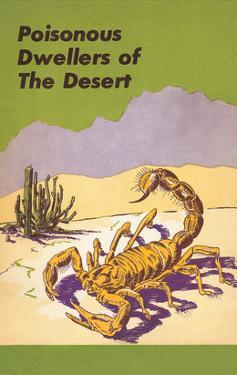 Scorpion, Poisonous Desert Dweller