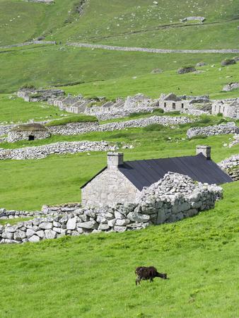https://imgc.allpostersimages.com/img/posters/scotland-st-kilda-islands-hirta-island-abandoned-settlement_u-L-PU3GAU0.jpg?p=0