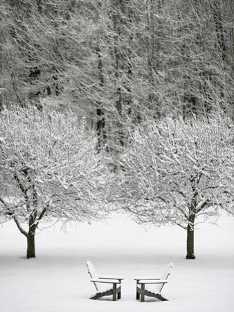 Snow covered landscape by Scott Barrow