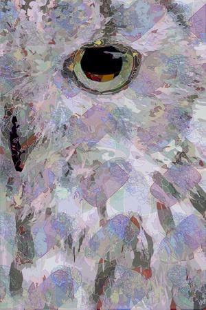 Owl3 (digital)
