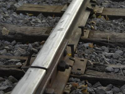 Spikes Partially Protruding from Cross Ties Along a Railway Track