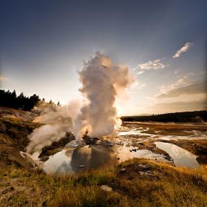 Ledge Geyser; Norris Geyser Basin @ Yellowstone Na by Scott Stringham photographer