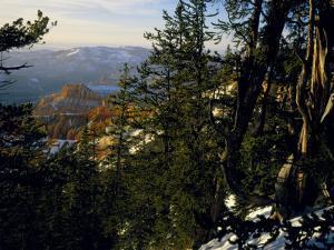 Bristlecone Pines Above Cedar Breaks at Sunset in Wintercedar Breaks National Monument, Utah, USA by Scott T. Smith