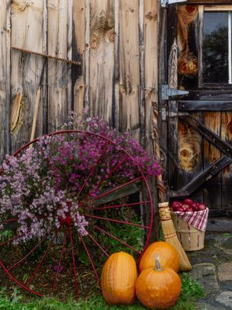 Outside barn in autumn at Drury Place. Weston, Vermont, USA by Scott T. Smith