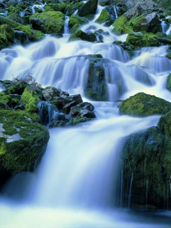 Periodic Spring During Period of High Flow, Salt River Range, Bridger-Teton National Forest, WY