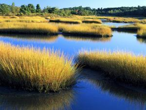 Salt Marsh at Sunrise, Estuary of New Meadow River in Early Autumn, Maine, Usa by Scott T. Smith