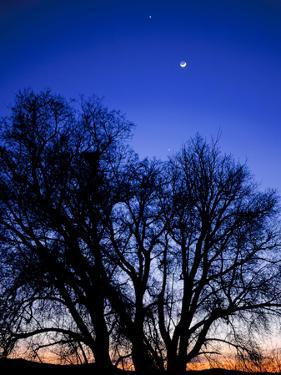Utah. Venus, the Moon, and Jupiter in a Compact Grouping in the Sky by Scott T. Smith