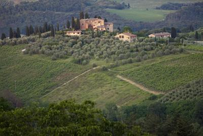 A View of the Surrounding Tuscan Countryside from San Gimignano, Italy by Scott Warren