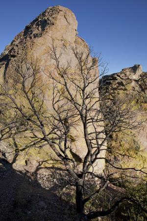 Rock Formation at Massai Point in Chiricahua National Monument by Scott Warren
