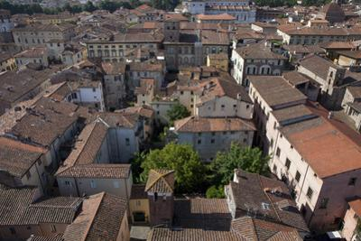 View of the City from the Torro Guinigi in Lucca, Italy