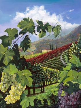 One Vine Day by Scott Westmoreland