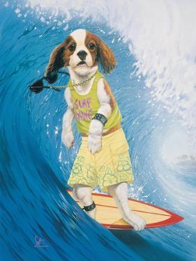 Surf Dawg by Scott Westmoreland