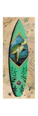 Turtle Board by Scott Westmoreland