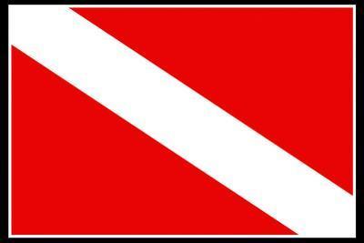 Scuba Diver Down Flag Plastic Sign