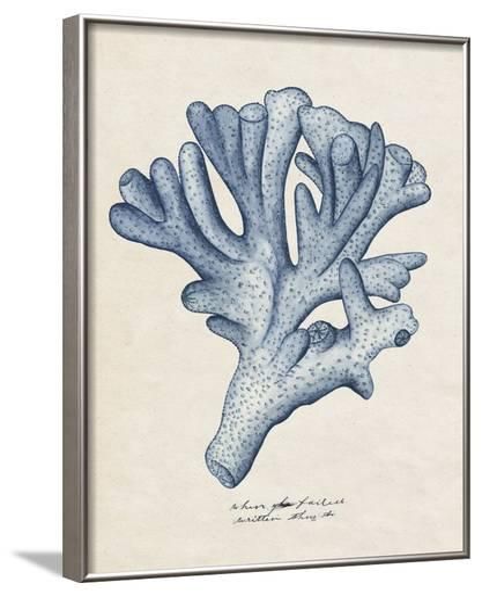 Sea Coral Study I--Framed Art Print