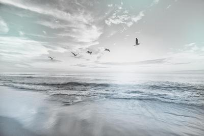 https://imgc.allpostersimages.com/img/posters/sea-graced-1_u-L-Q1H923U0.jpg?artPerspective=n