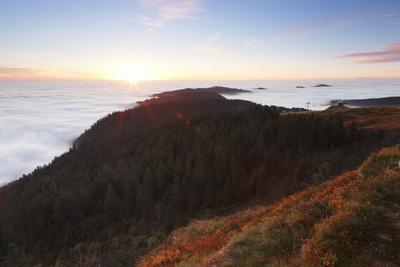 https://imgc.allpostersimages.com/img/posters/sea-of-fog-at-the-feldberg-at-sunrise-black-forest-baden-wurttemberg-germany_u-L-Q1EY6KQ0.jpg?artPerspective=n