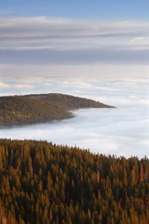https://imgc.allpostersimages.com/img/posters/sea-of-fog-at-the-feldberg-at-sunrise-black-forest-baden-wurttemberg-germany_u-L-Q1EY7RP0.jpg?artPerspective=n