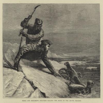 https://imgc.allpostersimages.com/img/posters/seals-and-sealskins-hunters-killing-the-seals-in-the-arctic-regions_u-L-PUSOJP0.jpg?p=0