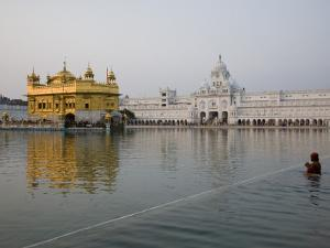 Harmandir Sahib (Golden Temple), Reflecting in the Waters of the Amrit Sarovar by Sean Caffrey