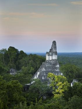 Temple of Great Jaguar (Temple I) Rising Above Tree Tops by Sean Caffrey