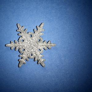Decorative Snowflake by Sean Justice