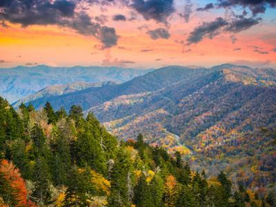 Autumn Morning in the Smoky Mountains National Park