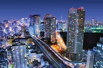 Dense Buildings In Minato-Ku, Tokyo Japan With Tokyo Sky Tree Visible On The Horizon by SeanPavonePhoto