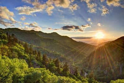 Newfound Gap in the Smoky Mountains near Gatlinburg, Tennessee. by SeanPavonePhoto