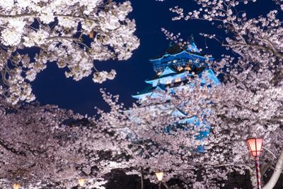 Osaka, Japan at Osaka Castle Park in the Springtime. by SeanPavonePhoto