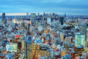 Skyline of Tokyo, Japan towards Shinjuku by SeanPavonePhoto
