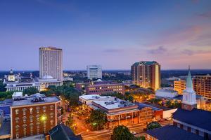Tallahassee, Florida, USA Downtown Skyline. by SeanPavonePhoto