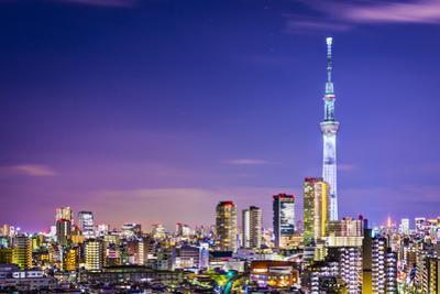 Tokyo, Japan Cityscape with the Skytree. by SeanPavonePhoto