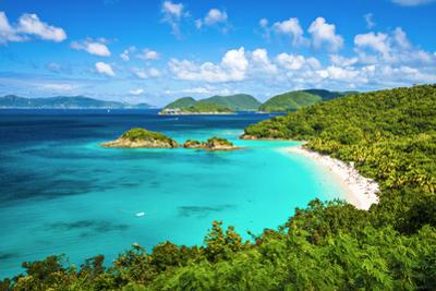 Trunk Bay, St John, United States Virgin Islands. by SeanPavonePhoto