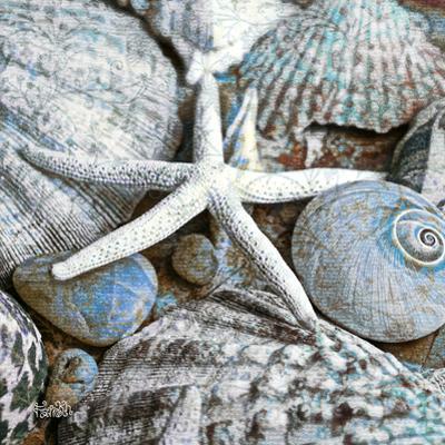 Seashells in Blue I