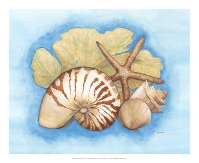 https://imgc.allpostersimages.com/img/posters/seashells-seafan-i_u-L-F86OCE0.jpg?p=0