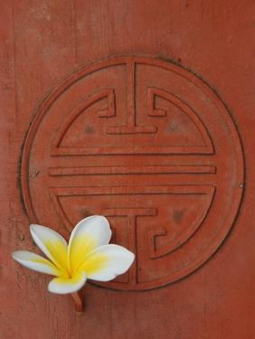 Long Life Symbol and Lotus Flower by Sebastien Desarmaux