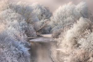 Winter Song by Sebestyen Bela