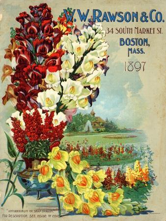 https://imgc.allpostersimages.com/img/posters/seed-catalog-captions-2012-w-w-rawson-and-co-boston-massachusetts-1897_u-L-Q1BAKEX0.jpg?p=0