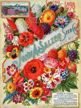 Seed Catalogues: John A. Salzer Seed Co. La Crosse, Wisconsin, Spring 1898